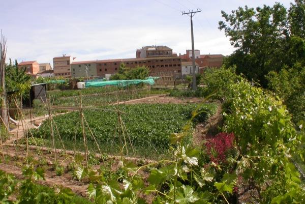 12.06.2010 Horts del pont   Torà -  Ramon Sunyer
