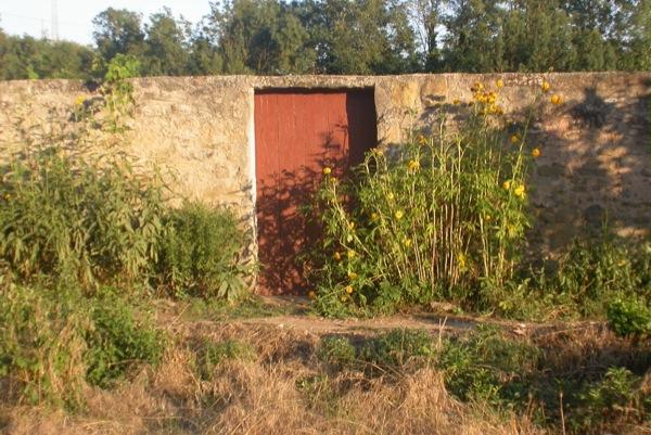23.08.2010 Porta d'entrada amb flors  Torà -  Ramon Sunyer