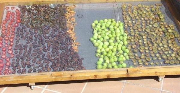 Tècniques per assecar vegetals -