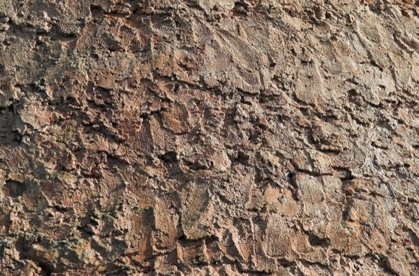 05.04.2010 Rebossat exterior.  Vallferosa -  Xavier Sunyer