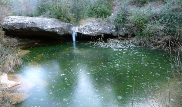 20.12.2009 Riu llanera. A l'hivern el riu es glaça, com es pot veure al gorg de l'Olla.  Llanera -  Xavier Sunyer