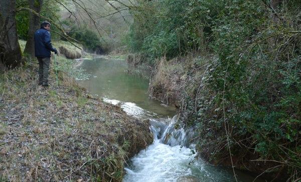 25.04.2009 Riu llanera. L'aigua tampoc es troba a faltar durant la primavera  Llanera -  Xavier Sunyer