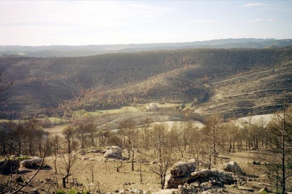 28.04.2011 La vall de Cellers després de l'incendi  -  Ramon Sunyer