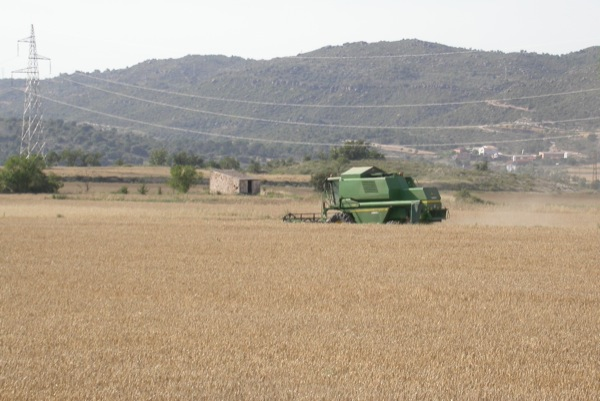 25.06.2011   Torà -  Ramon Sunyer