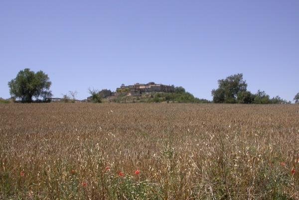 27.06.2011 Camps de cereals  Talteüll -  Ramon Sunyer