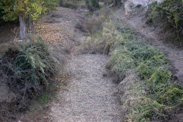 01.11.2011 La llera del riu Llanera  Torà -  Ramon Sunyer