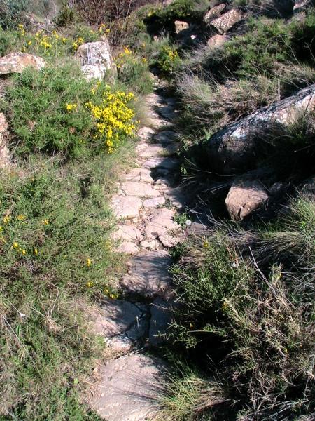 29.12.2011 El camí original tenia molts trams empedrats  L'Aguda -  isidre sunyer