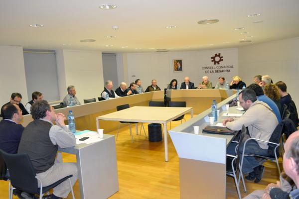 Plenari del Consell Comarcal de la Segarra