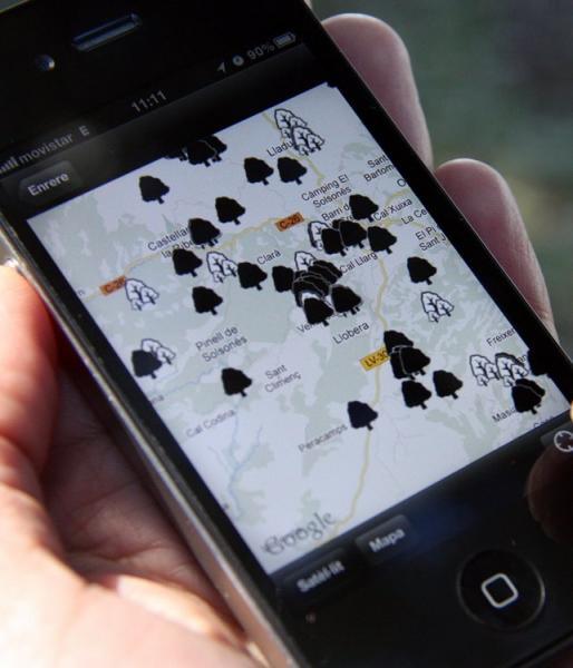 L'aplicació aporta informació detallada de 150 arbres singulars del Solsonè -
