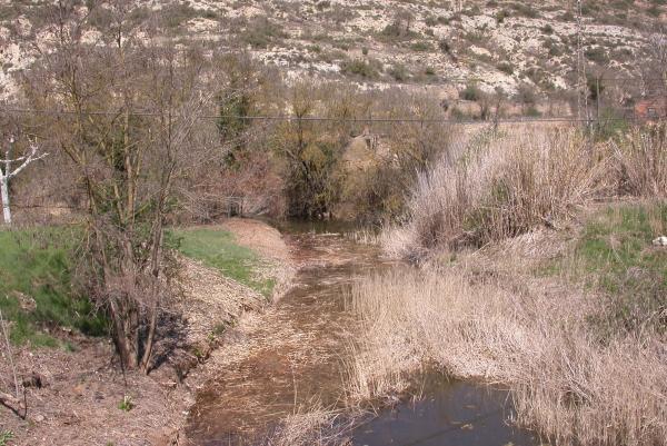 10.04.2012 El riu Llanera  Torà -  Ramon Sunyer