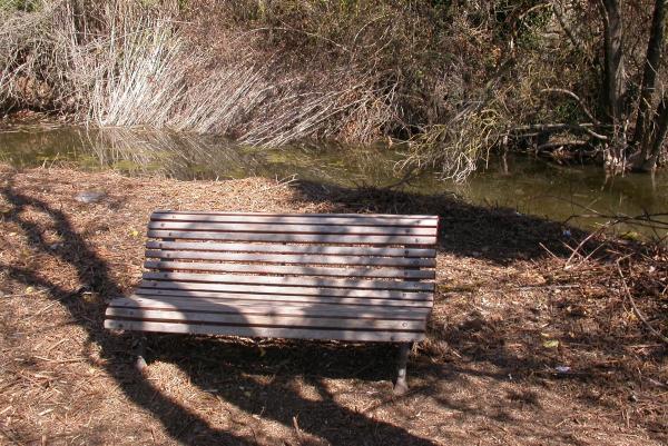 10.04.2012 Detall del riu Llanera  Torà -  Ramon Sunyer