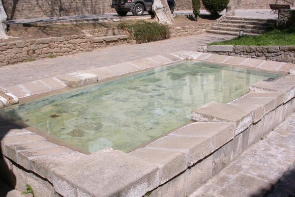 10.04.2012 El rentador públic  Torà -  Ramon Sunyer