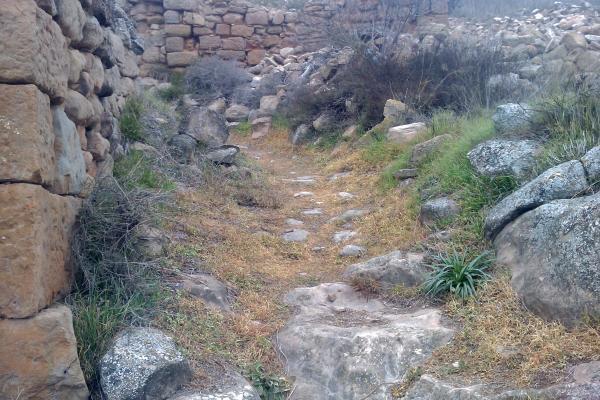 L'antic camí a l'arribar a l'Aguda - L'Aguda