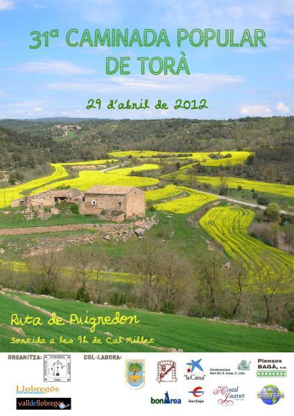 Cartell 31a caminada popular Torà -