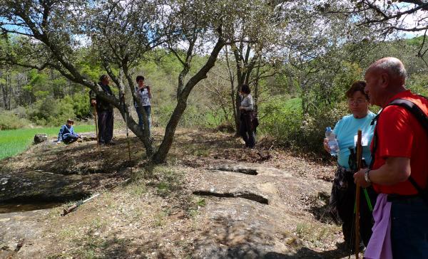29.04.2012 Les tombres infantils  Puigredon -  Xavi