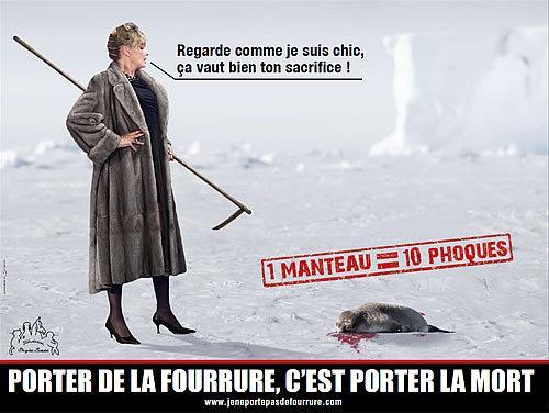 La Fundació Brigitte Bardot lluita contra totes les formes de sufriment animal -