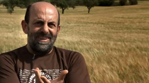 Pere Sellés enmmig de sembrats a Guissona -