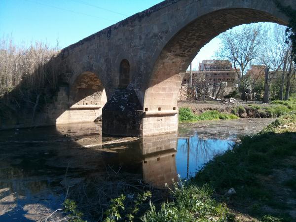 Pont de les Merites - Autor Ramon Sunyer (2013)