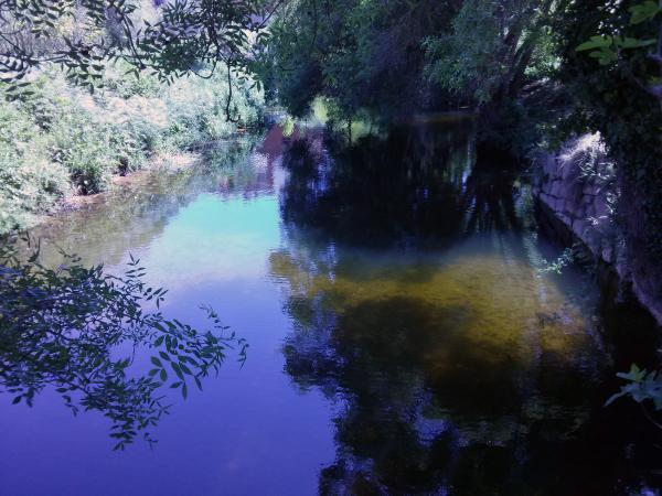 05.05.2013 Després de gairebé 18 mesos sec  Torà -  Ramon Sunyer