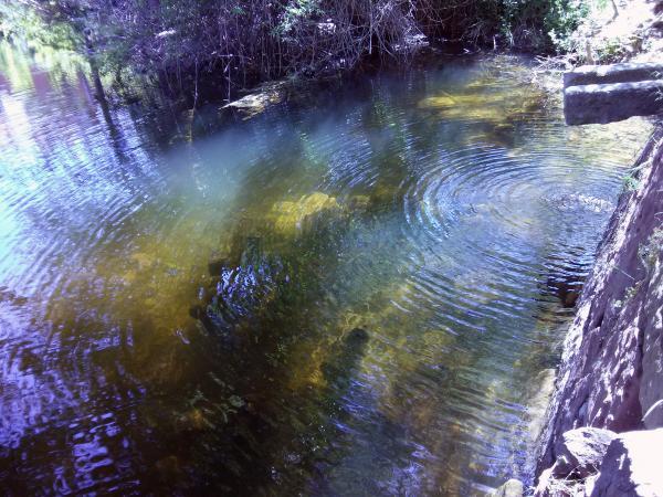 05.05.2013 L'aigua de la font també   Torà -  Ramon Sunyer