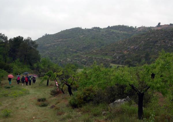 28.04.2013 220 caminants inicien la jornada  Torà -  Xavi