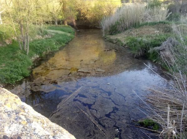 18.04.2013 Abril 2013. L'aigua del llanera arriba al pont de les Merites  -  Xavier