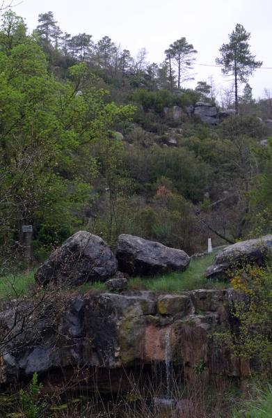 27.04.2013 Abril 2013. Les primeres pluges vessen pel saltalt de Fontanet  -  Xavier