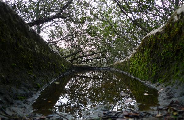 27.05.2013 La pluja vessa la tomba altmedieval de Clavells  -  Xavier