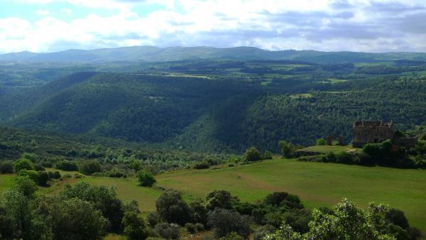 25.05.2013 25 maig.Vall del riu Llanera. Primer terme Ollers  -  Xavier