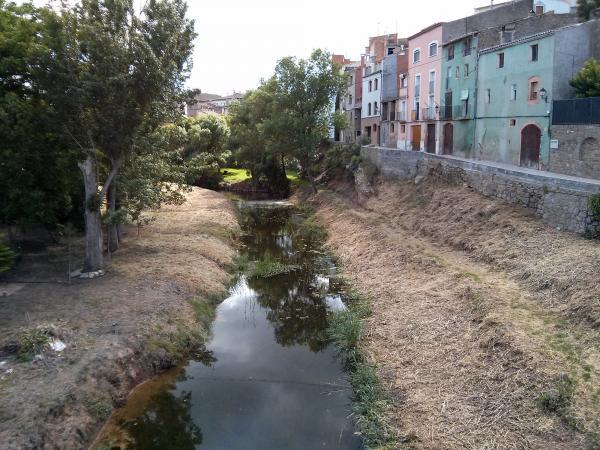 02.06.2013 El riu amb tot el seu esplendor  Torà -  Ramon Sunyer