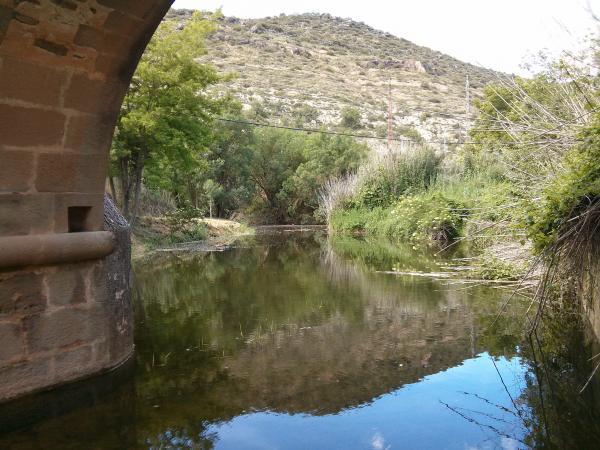 02.06.2013 Des de l'ull del pont  Torà -  Ramon Sunyer