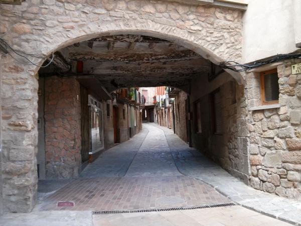 Ramon Bagà Trullols nasqué a Torà l'any 1775 Foto: Ramon Sunyer - Torà