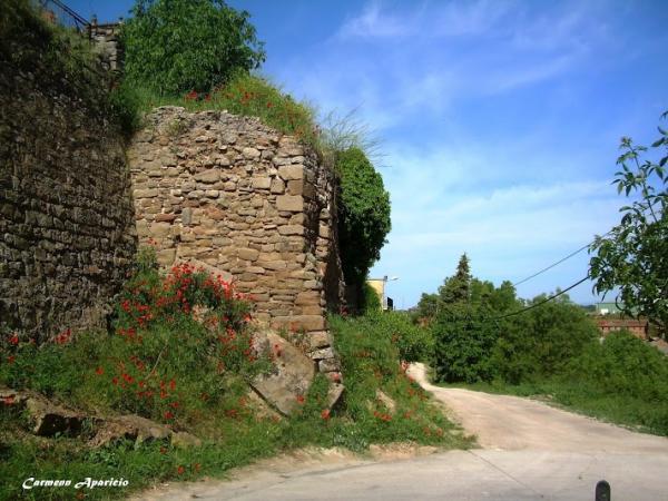 15.09.2013 Muralla del castell  Torà -  Carmen Aparicio