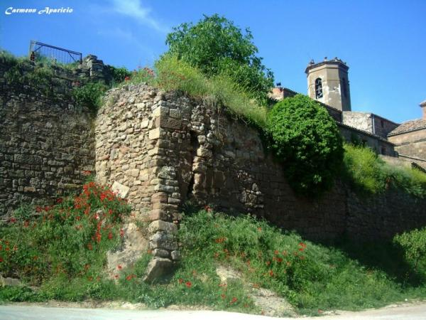 15.09.2013 Detall de la muralla del castell  Torà -  Carmen Aparicio