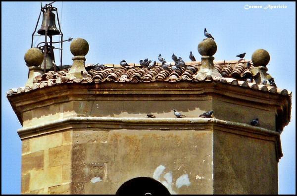 15.09.2013 Detall del campanar des de la meva finestra  Torà -  Carmen Aparicio