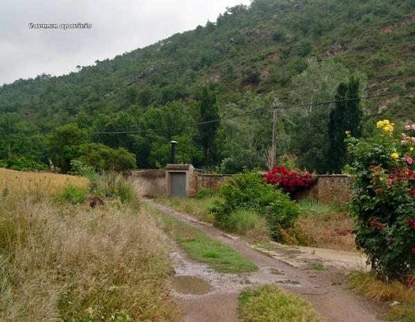 15.09.2013 paisatge de Torà  Torà -  Carmen Aparicio