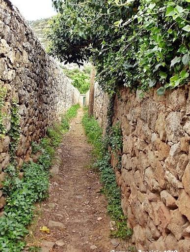 16.09.2013 Camins dels horts  -  Carmen Aparicio
