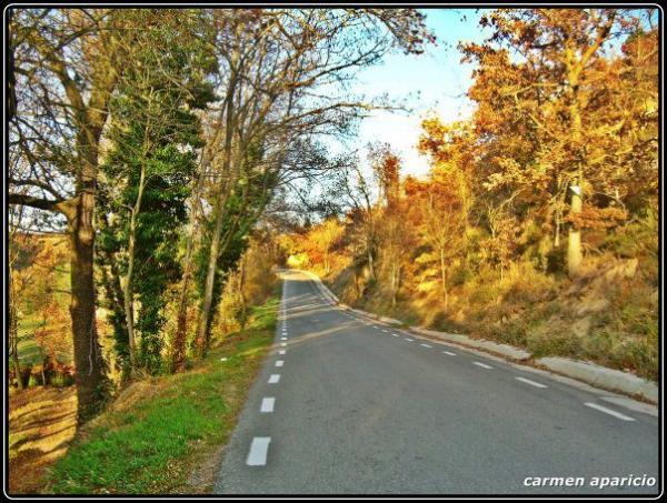 23.09.2013 Carretera de Solsona  -  Carmen Aparicio