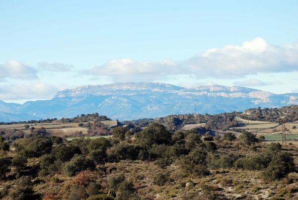 26.12.2013 La vall amb el Montsec al fons  Biosca -  Ramon Sunyer