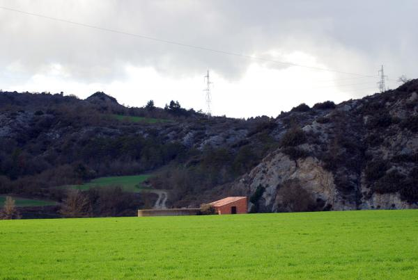 24.03.2014 Els verds esclaten a la primavera  -  Ramon Sunyer