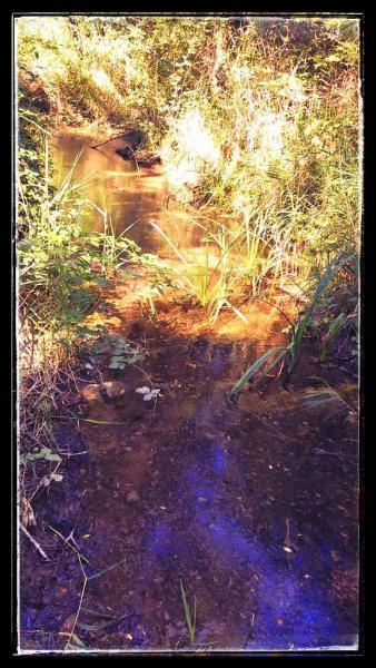 14.08.2014 el Llanera amb poca aigua  Torà -  Ramon Sunyer