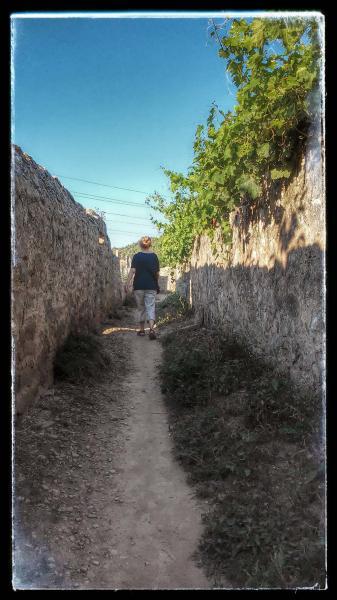 21.08.2014 passejant  Torà -  Ramon Sunyer