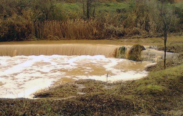 Espai fluvial Peixera del Duc - Autor Àngela Sunyer (2014)