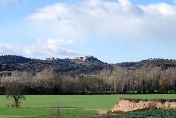 30.12.2014 vista de l'Alzina  Ribelles -  Ramon Sunyer