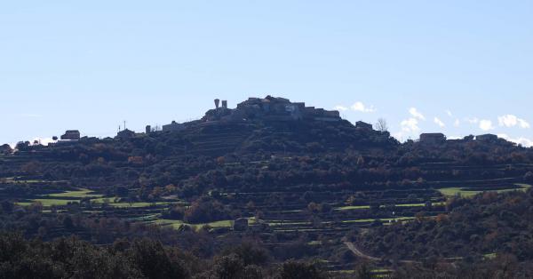 30.12.2014 Vista de Palou  Selvanera -  Ramon Sunyer