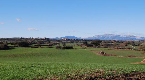 30.12.2014 paisatge  Vilalta -  Ramon Sunyer