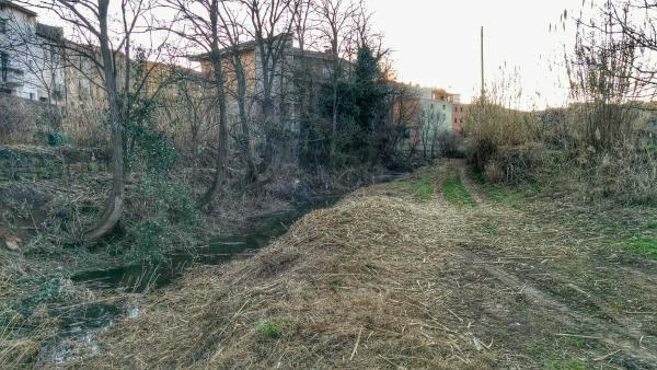 01.02.2015 Tasques de neteja dels marges  Torà -  Ramon Sunyer