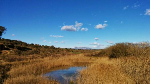Espai fluvial Patamolls de Granollers