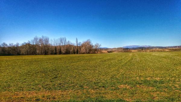 22.02.2015 Camps de cereals  Ribelles -  Ramon Sunyer