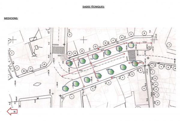 Projecte d'arbrat de la plaça de la Creu - Torà